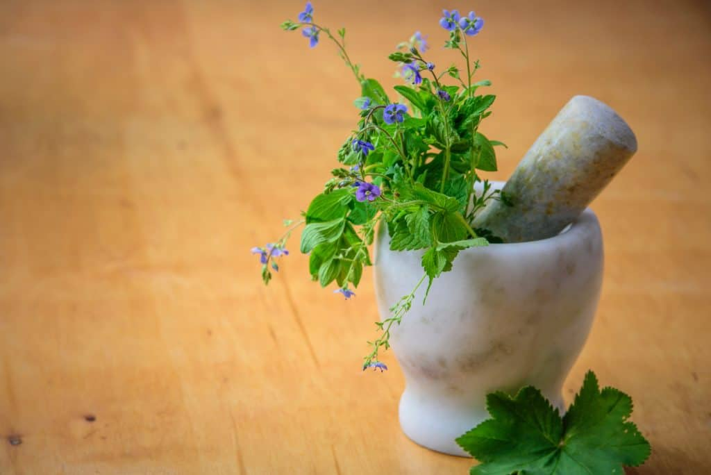 Top 6 Common Medicinal Herbs And Their Benefits