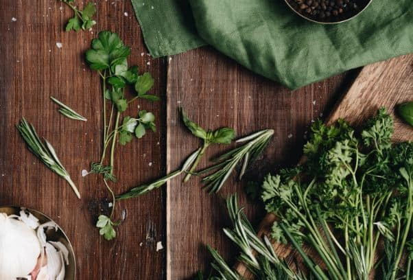 List of Medicinal Plants For A Home Garden